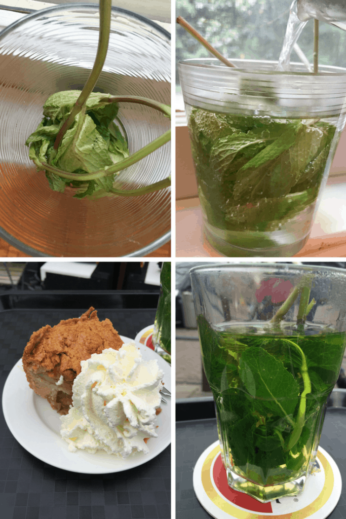 I've never had mint tea this delicious! You've GOT to try this Dutch fresh mint tea!