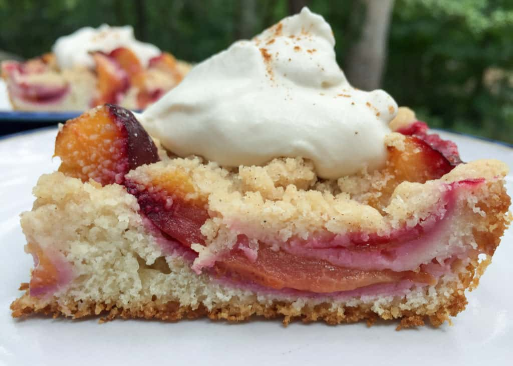 Look at this gorgeous German plum cake!