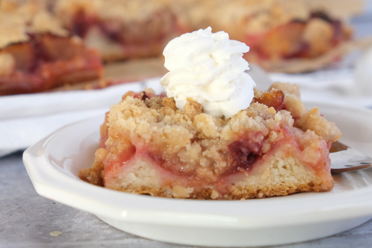 This image has an empty alt attribute; its file name is German-Plum-Cake-24.jpg